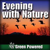 Evening with Nature (Nature Sound) by Green Powered