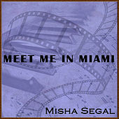 Meet Me in Miami by Misha Segal
