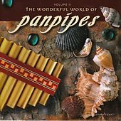 The Wonderful World of Panpipes, Vol. II by Brad White & Pierre Grill