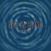 Naci En Alamo by Yasmin Levy