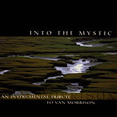 Into The Mystic: An Instrumental Tribute To Van Morrison by Van Morrison