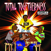 Total Togetherness Vol. 12 von Various Artists