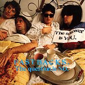 The Question Is No by Fastbacks