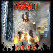 F.U.F.B. by Perfect