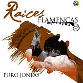 Puro Jondo by Various Artists