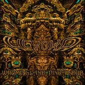 Whomp Gland & Pineal Dub by Heyoka