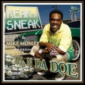 All N Da Doe by Keak Da Sneak