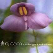 Underground Vibes by DJ Cam