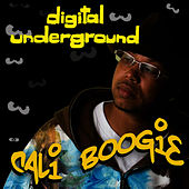 Cali Boogie - Single by Digital Underground