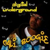 Cali Boogie - Single by Digital Underground