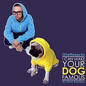 I Can Make Your Dog Famous (Mixtape) by Ghettosocks
