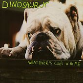 Whatever's Cool With Me by Dinosaur Jr.