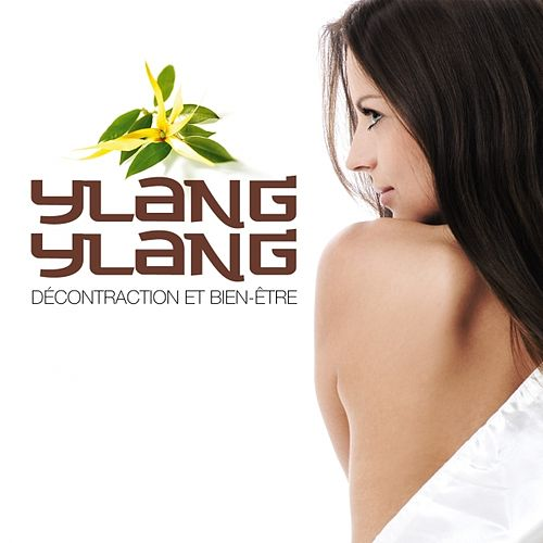 Ylang Ylang decontraction et bien-être by Various Artists