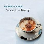 Storm In A Teacup by Harem Scarem