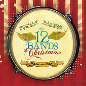 Bordertown Music: The 12 Bands of Christmas®, Vol. 6 by Various Artists