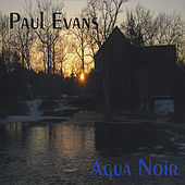 Agua Noir by Paul Evans