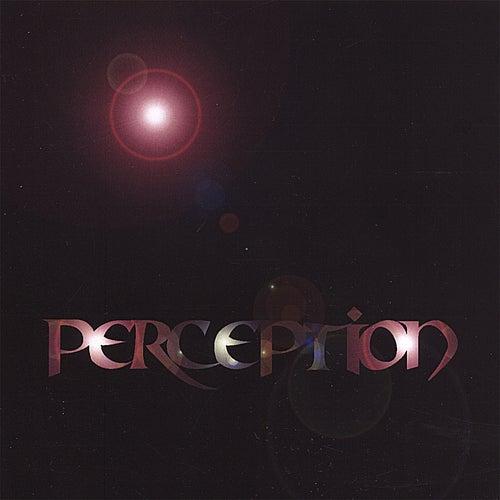 Perception by Perception