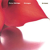 Stranger in Town by Peter Eldridge