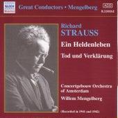 Ein Heldenleben by Richard Strauss
