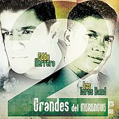 2 Grandes del Merengue Vol. 4 by Various Artists