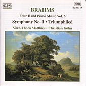 Four Hand Piano Music Vol. 6 by Johannes Brahms