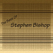 Stephen Bishop by Stephen Bishop