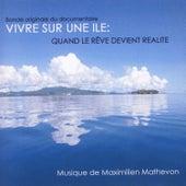 Vivre Sur Une Ile : Quand Le Reve Devient Realite by Maximilien Mathevon