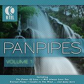 Favourite Pan Pipe Melodies - Vol. 1 by Pierre Belmonde