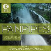 Favourite Pan Pipe Melodies - Vol. 4 by Pierre Belmonde