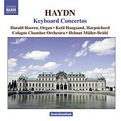 HAYDN: Concertos for Harpsichord and Organ by Various Artists