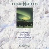True North by James Reynolds