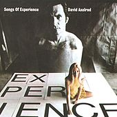 Songs Of Experience by David Axelrod