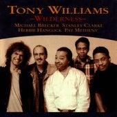 Wilderness von Tony Williams