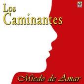 Miedo De Amar by Los Caminantes