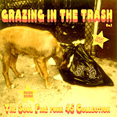 Truth & Soul presents Grazing In The Trash Vol 1 : The Soul Fire Funk 45 Collection by Various Artists