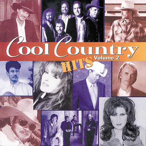 Cool Country Hits Vol. 2 by Various Artists