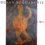 Yano Mori by Dusan Bogdanovic