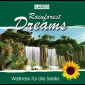Rainforest Dreams - Stimmungsvolle Naturgeräusche mit Entspannungsmusik (GEMA-frei) by Largo