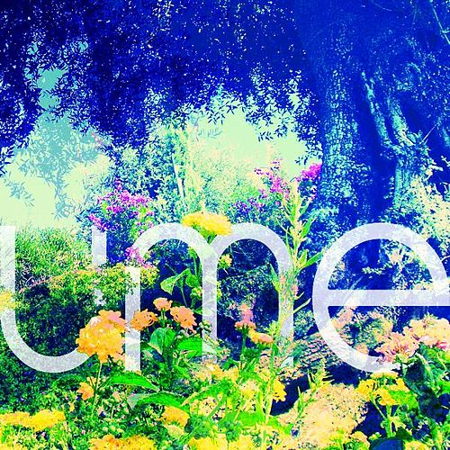 Sunshower EP by Ume