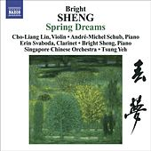 Sheng, Bright: Spring Dreams/ Three Fantasies for Violin and Piano/ Tibetan Dance by Various Artists