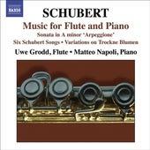 Franz Schubert: Arpeggione Sonata by Matteo Napoli