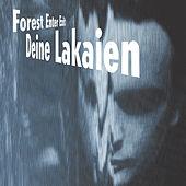 Forest Enter Exit by Deine Lakaien