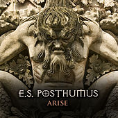 Arise (Theme to the Afc Championship On Cbs) - Single by E.S. Posthumus