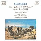 Piano Quintet, D. 667