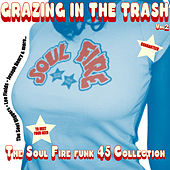 Truth & Soul presents Grazing In The Trash Vol. 2 : The Soul Fire Funk 45s by Various Artists