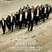 SIBELIUS, J.: Partsongs/Vapautettu kuningatar/Rakastava/Laulu Lemminkaiselle (YL Male Voice Choir) (YL - The Voice of Sibelius) by Various Artists