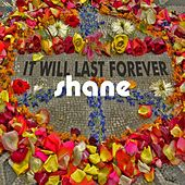 It Will Last Forever by Shane