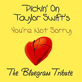 Pickin on Taylor Swift's You're Not Sorry by Pickin' On