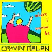 Where I Wanna Be by Cravin' Melon