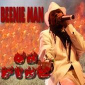 On Fire von Beenie Man